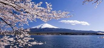 日本、台湾多项特权